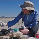 Científicos estadounidenses descubren microorganismo que se desarrolla y mantiene vivo a base de arsénico.