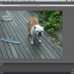 La versión beta de Photoshop CS6 muestra una interfaz similar a la de Aperture