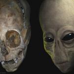 Científicos creen que este cráneo triangular podría ser de un extraterrestre